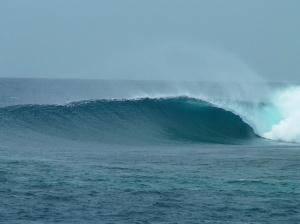 Aleko Maldivas 325