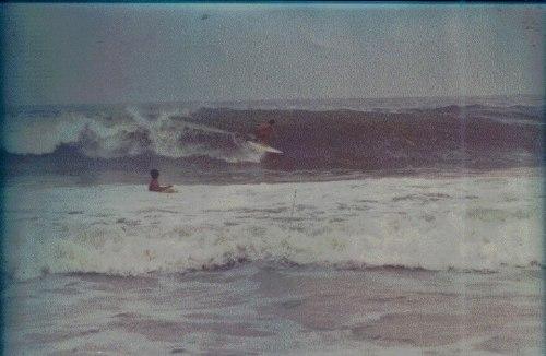 zampo  praia vermelha 1979 diamond tail
