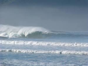 big litoral norte